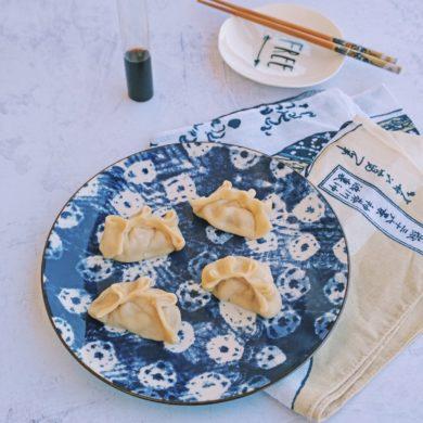 ravioli dumplings cinesi giapponesi